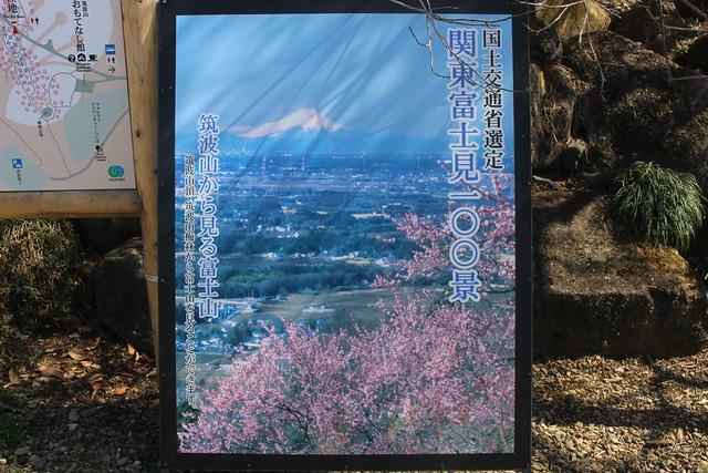 tsukubasan-gosyuin061