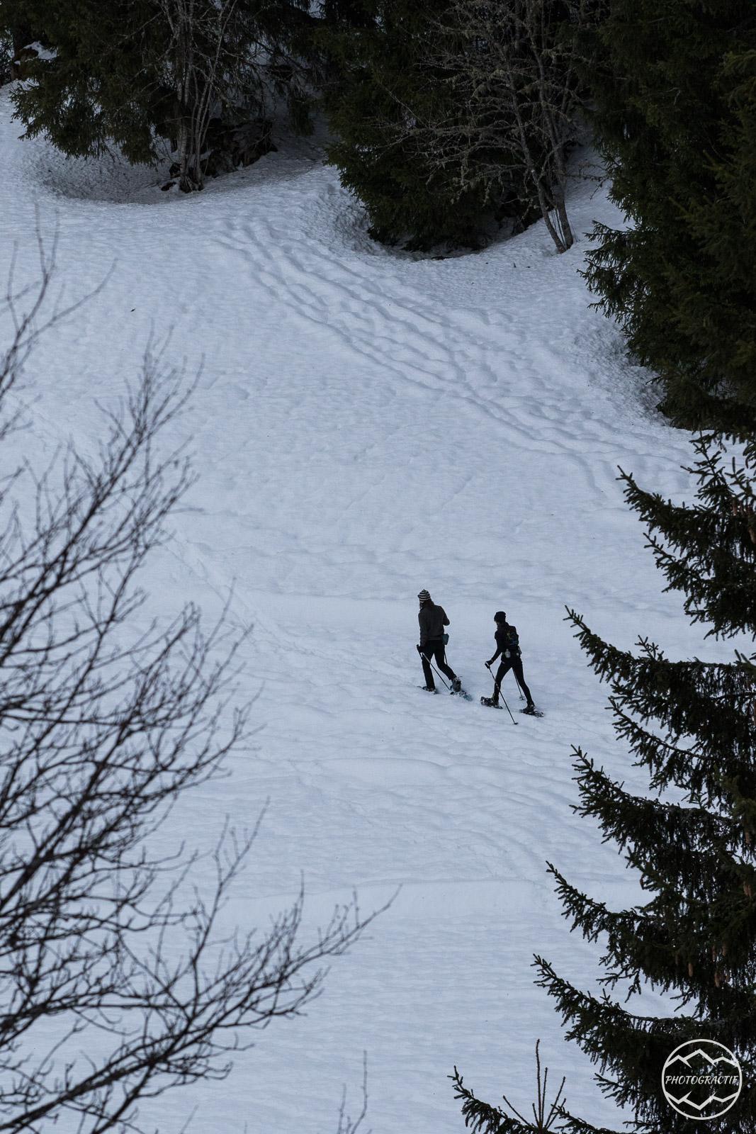 DSN Entrainement Ski Raquettes (89)
