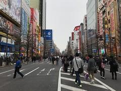 Pedestrian street of Akihabara