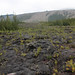 La coulée 2004 de La Fournaise