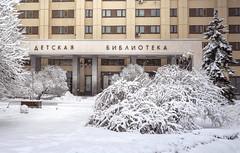 РГДБ зимой