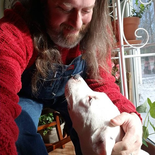 Fun with doggo #Carla #dogsofinstagram #pitbullsofinstagram #pitbullmix #pittie #overalls #dungarees #biboveralls #vintage #dickiesworkwear #denim #bluedenim #denimoveralls #overallsarelife #vintageoveralls #redsweater