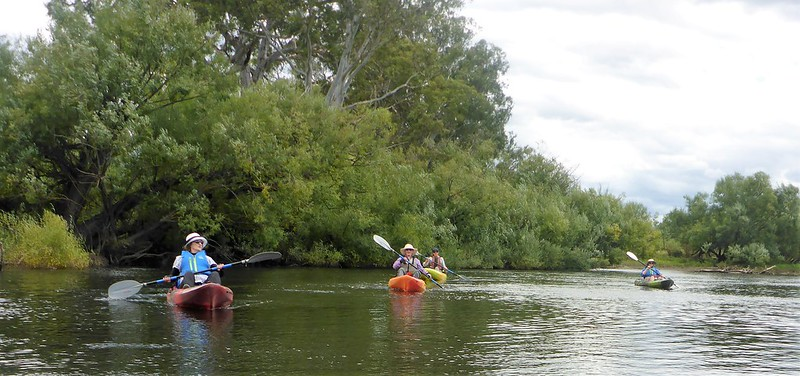 Upper Murray river paddlers