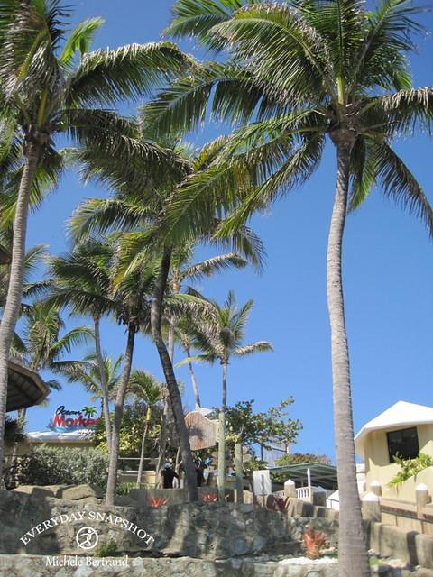 Amber Cove, Dominican Republic (7)