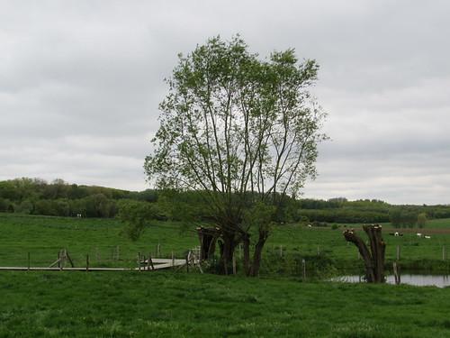 Zillebeke: Komenseweg (West-Vlaanderen)