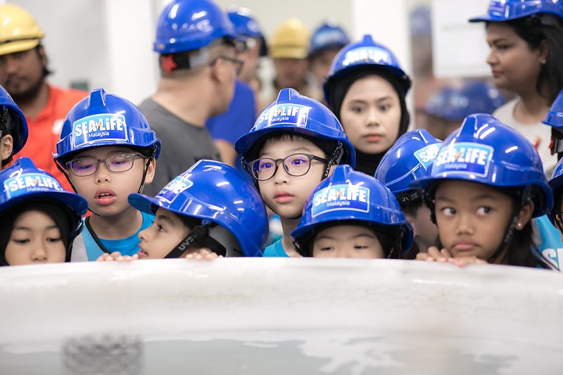 SEA LIFE Malaysia Welcomes First Group of Fish