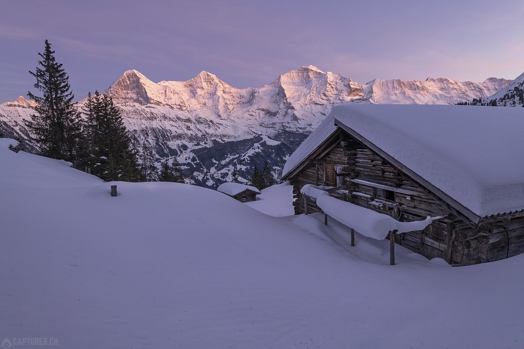 Dusk with Eiger Mönch and Jungfrau - Sulwald