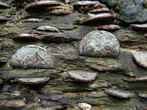 Coins embedded in a fallen tree near Janet Foss waterfalls on our Malham walk in the Yorkshire Dales of England