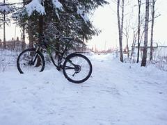 Ibsens - Hovskogen, Askim, Østfold, Norway