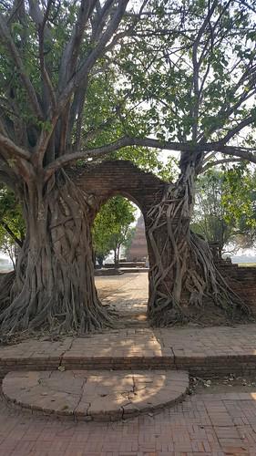 Ayutthaya-0149