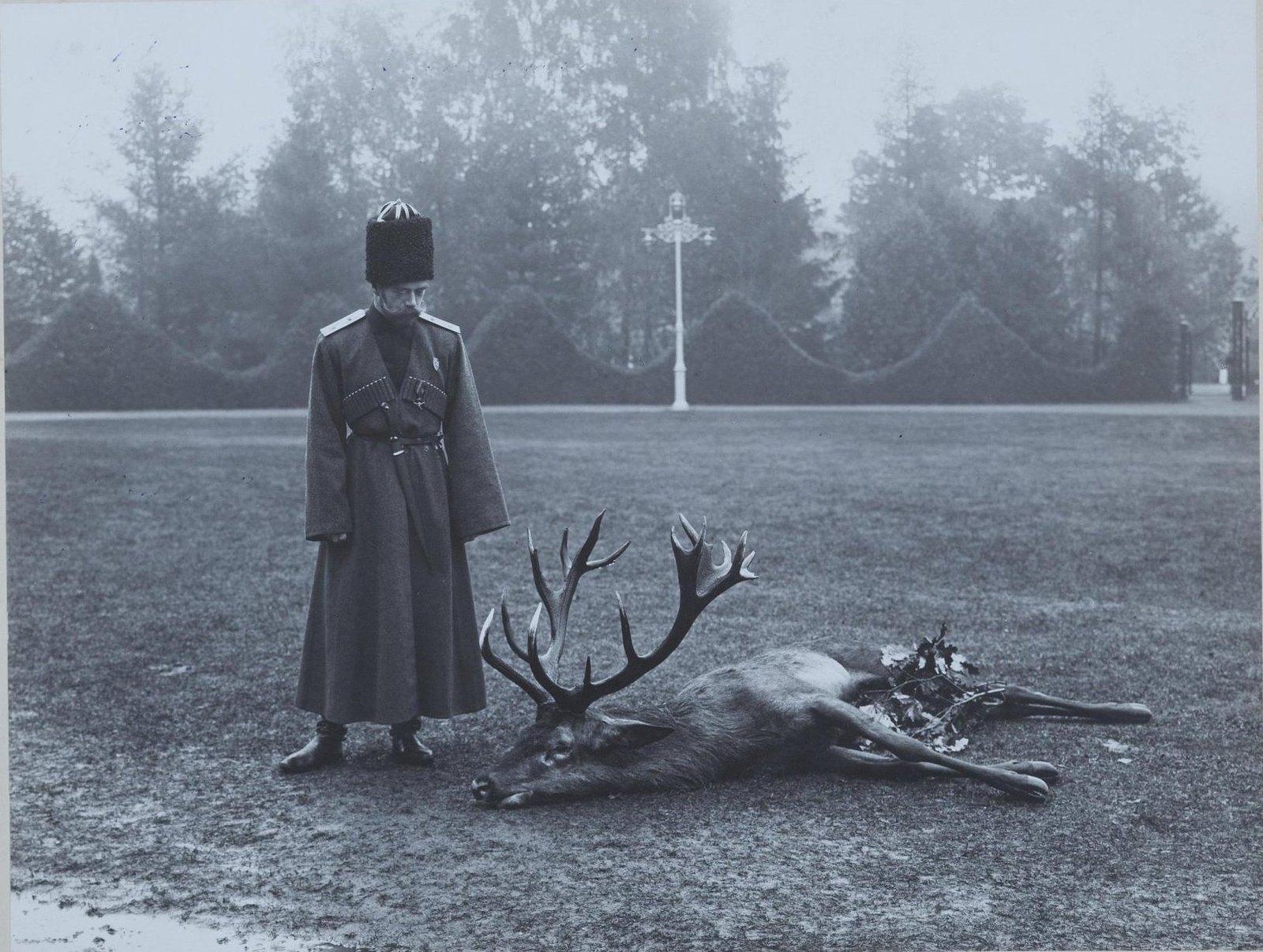 1912. Император Николай II около убитого оленя. Сентябрь