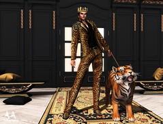 Killer Queen by Brocade Tiger
