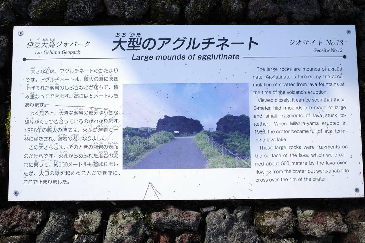 伊豆大島・三原山 大型のアグルチネート