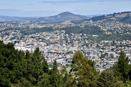 Central Dunedin from Signal Hill
