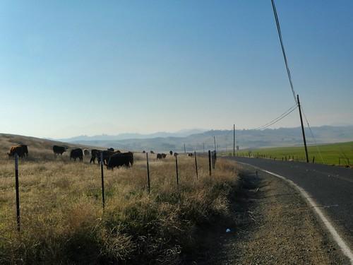 2019-01-04 - Landscape Photography, Mount Diablo, Set 4