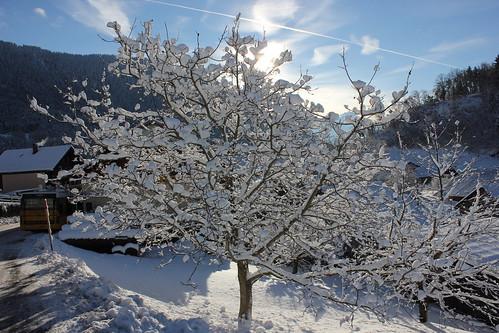 Corbeyrier - Suisse romande.