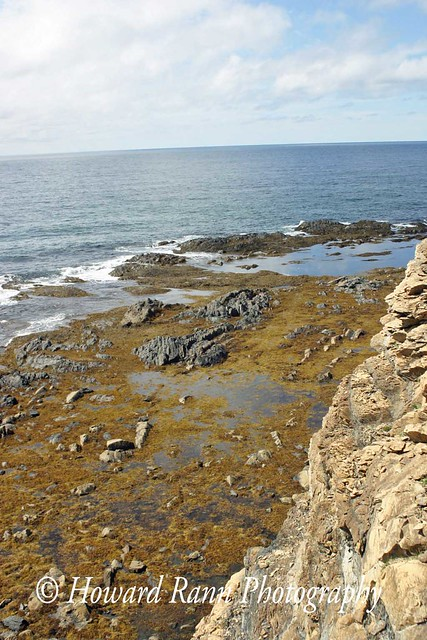 Gros Morne National Park (620)