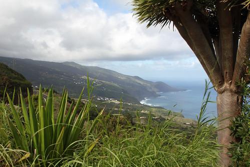 Northcoast of La Palma from the Mirador La Tosca
