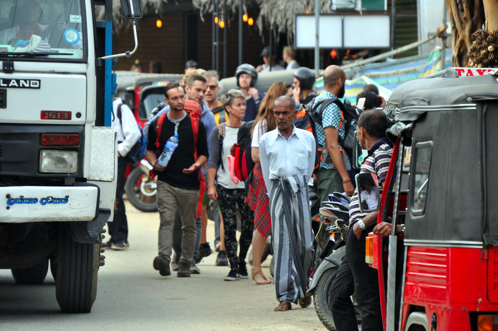 Tren de Ella, Ella Railway - Sri Lanka tren de ella - 39931039233 3f4f7a0f6f h - Tren de Ella en Sri Lanka: ¿El viaje en tren más pintoresco del mundo?