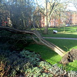 Storm damage at Winckley Square, Preston
