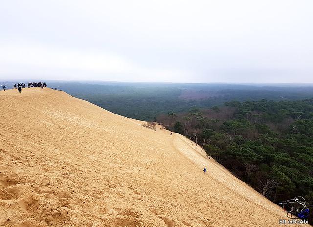 Duna de Pilat, la duna más grande de Europa 14