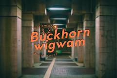 Buck horn guest house