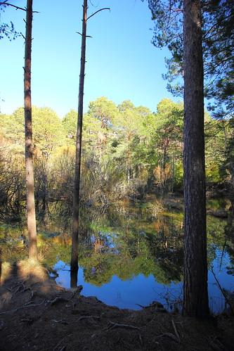Nacimiento del Rio Cuervo 4