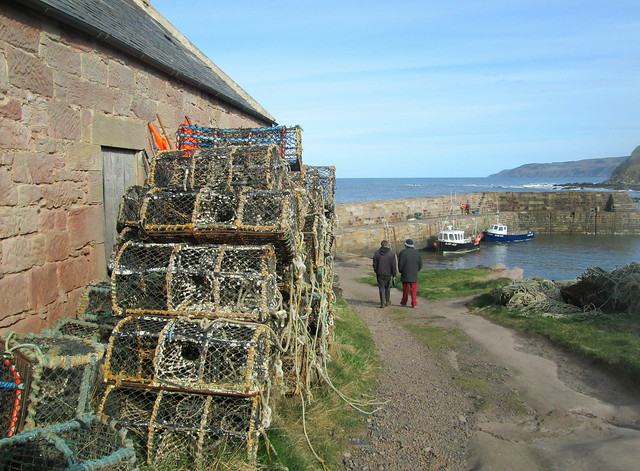 Cove Harbour , creels