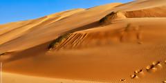 Dunes (Adra, Mauritanie)