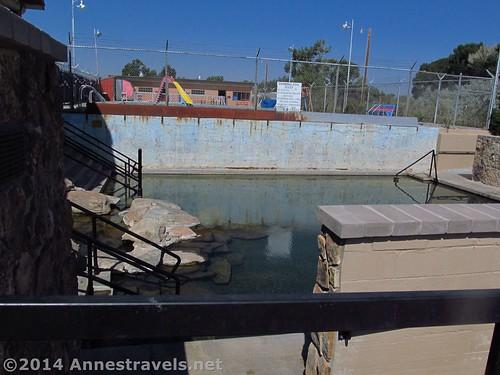Hobo Pool Hot Pool 2