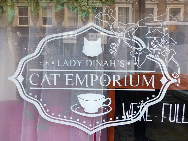 cat emporium