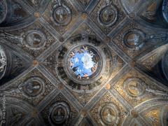 Mantova (Italy)