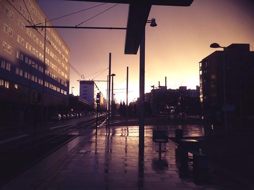 Olvidados tram stop after the rain