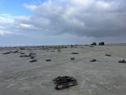 Cleaning up Terschelling after MSC Zoe lost 281 containers causing a catastrophe for Wadden Sea nature reserve