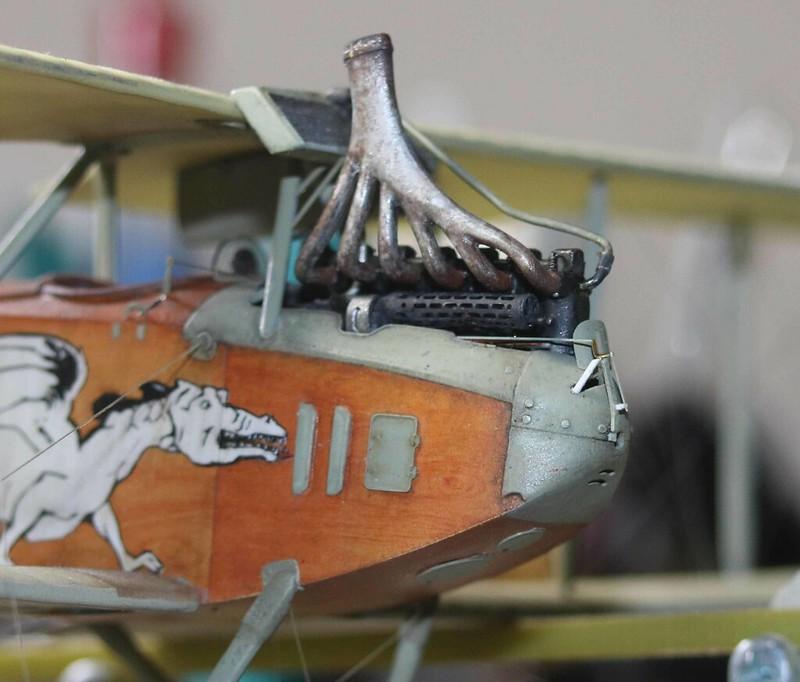 1/48 Albatros C. III   Crocodile et Dragon - Page 2 32864790408_13bfec9912_c