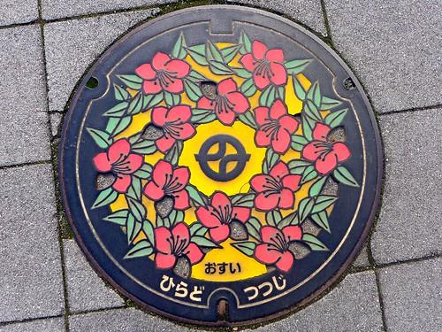 Kyotanabe Kyoto, manhole cover 7 (京都府京田辺市のマンホール7)