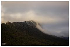 Mist. - Photo of Fontanès