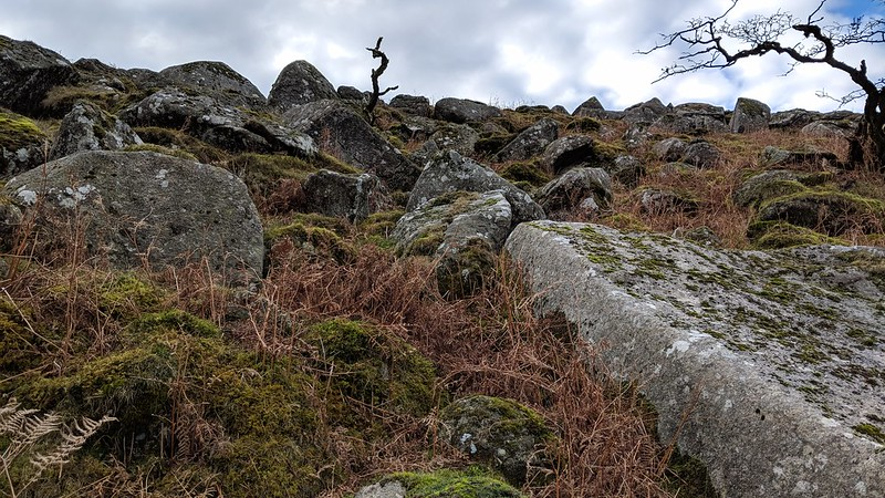 Ascending Narrow Tor