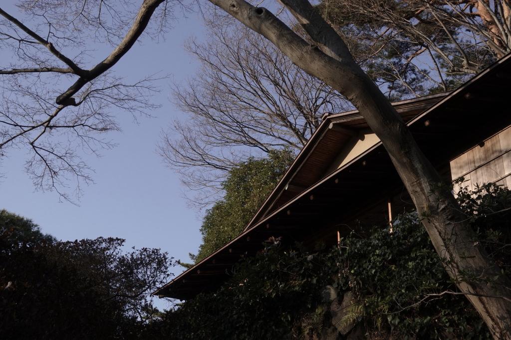 fujimitei1902101