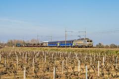 24 février 2019 BB 7356 Train 445169 Tarbes -> La Motte-Sainte-Roseline Preignac (33) - Photo of Saint-Macaire