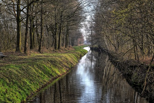 20190213 011 Koningslust wandeling Vlakbroek
