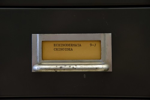 Geology Archive Room