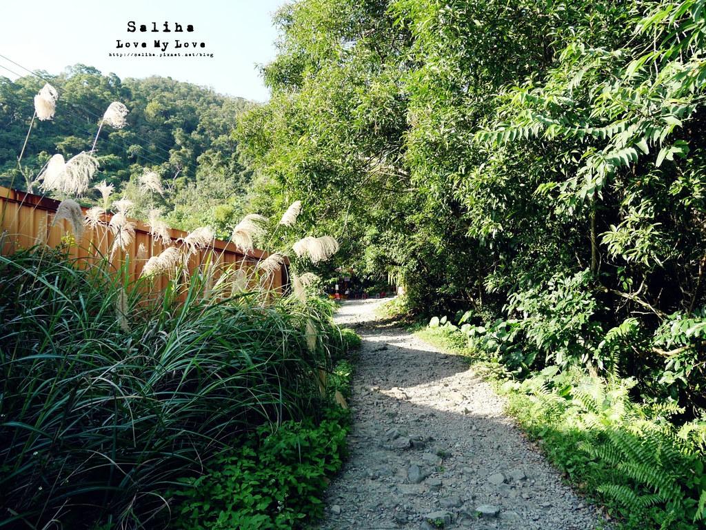 宜蘭礁溪一日遊景點推薦爬山踏青猴洞坑瀑布白石腳步道 (3)
