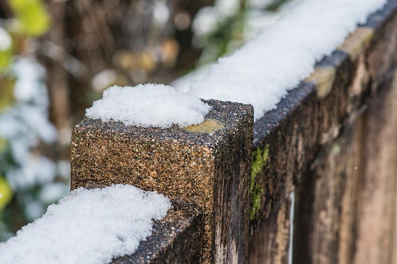 犬山城へ続く遊歩道に積もる雪