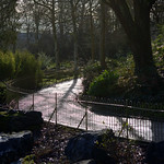 Path at Avenham Park, Preston