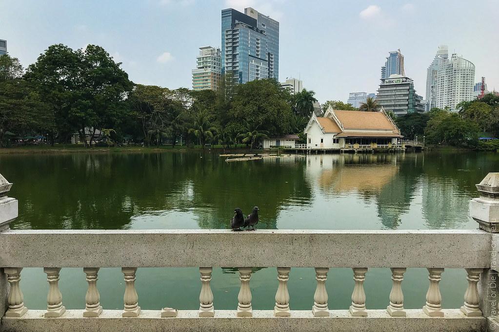 люмпини-парк-lumpini-park-bangkok-9097
