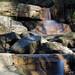 As Cascade Falls
