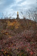 Le Sacré Coeur (Wolxheim,France)-116 - Photo of Kuttolsheim