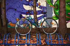 Bicycle and Colorful Environment