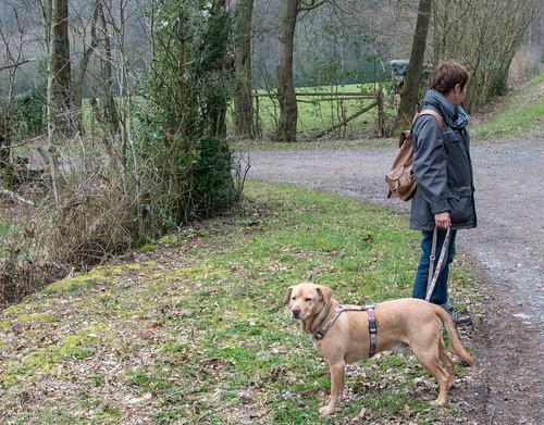 Sam, heute geht es durch den Wald!
